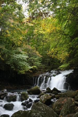 蓼科大滝の画像